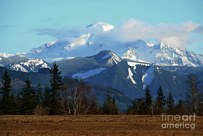 Snow Capped Majesty Poster by Cheryl Rose