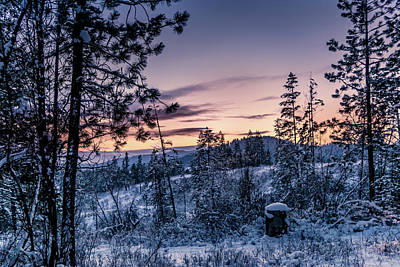 Snow Coved Trees And Sunset Poster