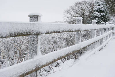Snow Covered Fence Poster by Helen Northcott