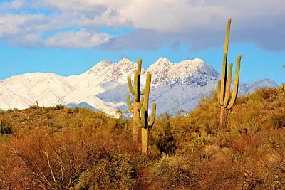 Snow Covered Four Peaks Poster