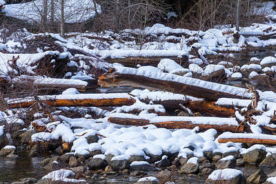 Snow Covered Logs Poster