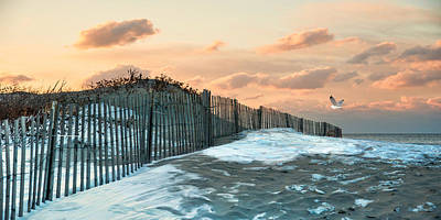 Poster featuring the photograph Snow Fence by Robin-Lee Vieira