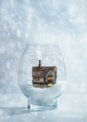 Snow Globe With Country Cottage Poster