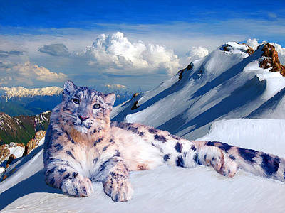 Snow Leopard On The Roof Of The World Poster