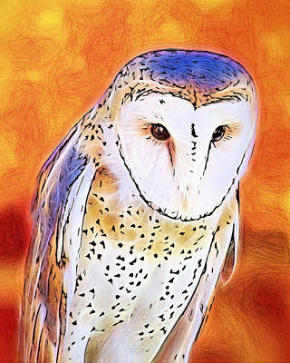 Poster featuring the digital art White Face Barn Owl by Tracie Kaska