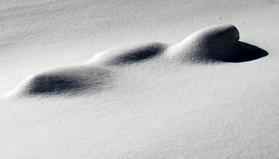 Poster featuring the photograph Snow Shadows 2 by Douglas Pike