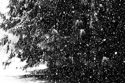Poster featuring the photograph Snow by Yulia Kazansky