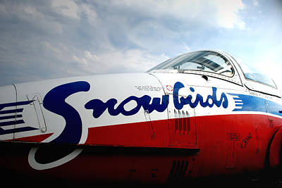 Snowbirds 2 Poster by Mark Alan Perry