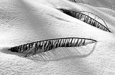 Snowbound Poster by Debbie Oppermann