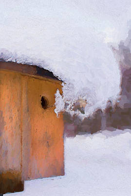 Poster featuring the photograph Snowdrift On The Bluebird House by Gary Slawsky