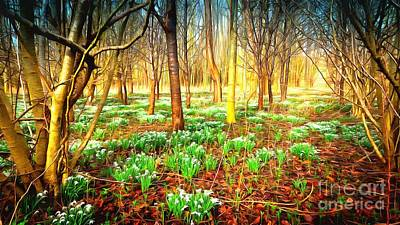 Snowdrops In The Woods Poster by Mick Flynn