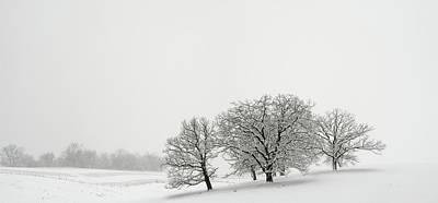 Snowfall Jo Davies County Illinois Poster by Steve Gadomski