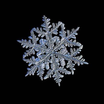 Snowflake Macro Photo - 13 February 2017 - 3 Black Poster by Alexey Kljatov