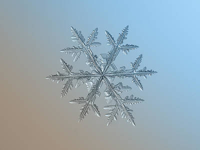 Poster featuring the photograph Snowflake Photo - Asymmetriad by Alexey Kljatov