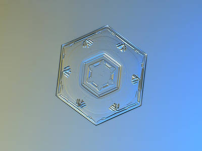 Snowflake Photo - Cryogenia Poster by Alexey Kljatov