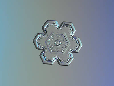 Snowflake Photo - Flower Within A Flower Poster by Alexey Kljatov