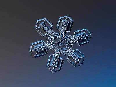 Snowflake Photo - Gecko's Paw Poster by Alexey Kljatov