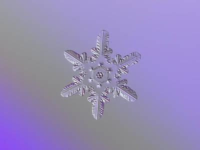 Snowflake Photo - Heart-powered Star Poster