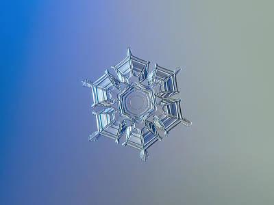 Snowflake Photo - Ice Relief Poster