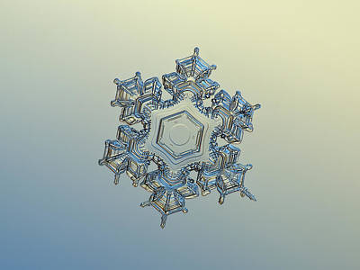 Snowflake Photo - Iron Crown Poster