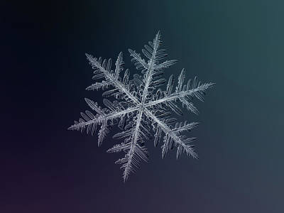 Poster featuring the photograph Snowflake Photo - Neon by Alexey Kljatov