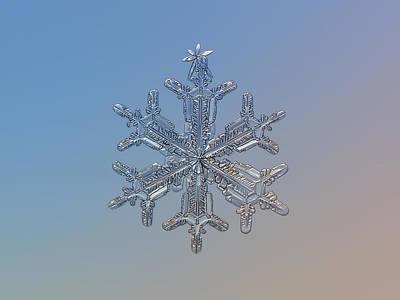 Snowflake Photo - Silver Plume Poster