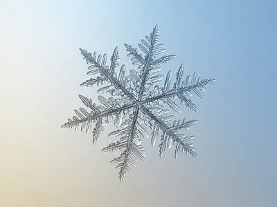 Poster featuring the photograph Snowflake Photo - Silverware by Alexey Kljatov