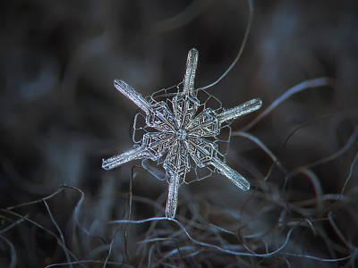 Snowflake Photo - Steering Wheel Poster
