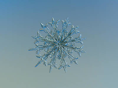 Poster featuring the photograph Snowflake Photo - Twelve Months by Alexey Kljatov