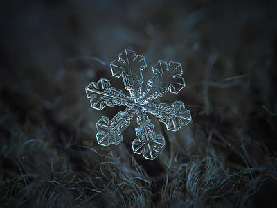 Poster featuring the photograph Snowflake Photo - Vega by Alexey Kljatov