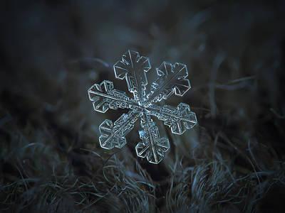 Snowflake Photo - Vega Poster by Alexey Kljatov