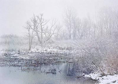 Snowmist Marsh Poster by Kathi Mirto