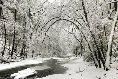 Snowy Clarks Creek Poster by Lori Deiter