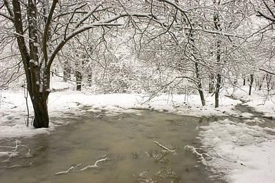 Snowy Day Poster by Amanda Kiplinger