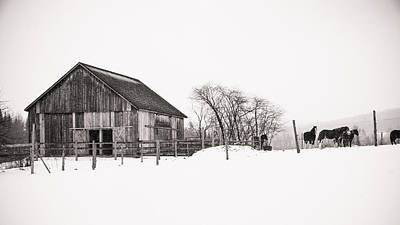 Snowy Day At The Farm Poster by Edward Myers