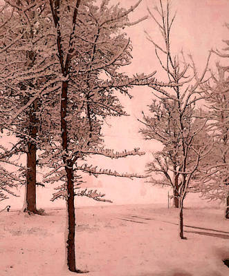 Poster featuring the photograph Snowy Day In Rose by Michelle Audas