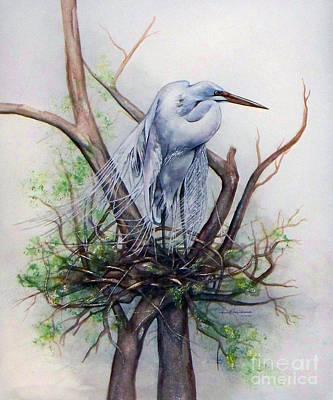Snowy Egret On Nest Poster by Laurie Tietjen