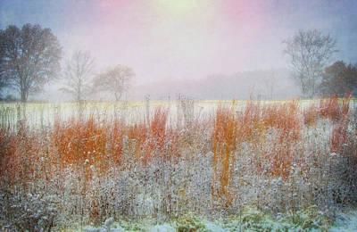 Snowy Field - Winter At Retzer Nature Center  Poster by Jennifer Rondinelli Reilly - Fine Art Photography