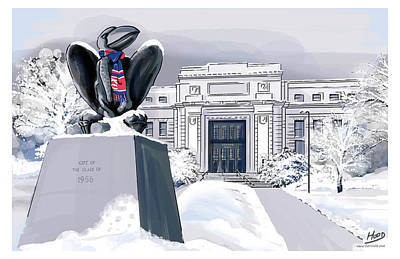 Snowy 'hawk Poster