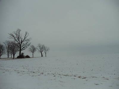 Snowy Illinois Field Poster