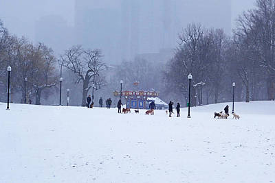 Snowy Playtime Boston Common Boston Ma Poster by Toby McGuire