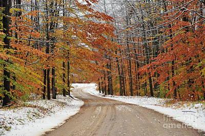 Snowy Road Through Autumn Poster by Terri Gostola