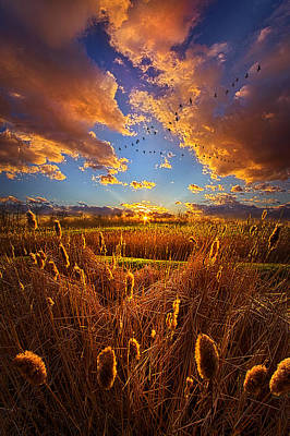 So Long I Can't Remember Poster by Phil Koch