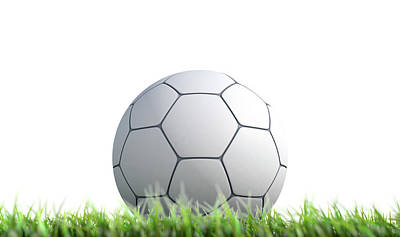 Soccer Ball Resting On Grass Poster