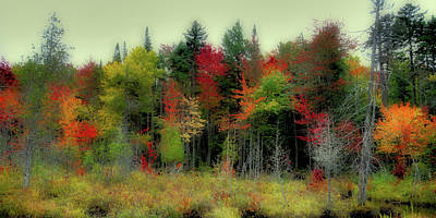 Poster featuring the photograph Soft Autumn Panorama by David Patterson