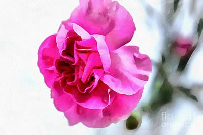 Soft Pink Poster by Krissy Katsimbras