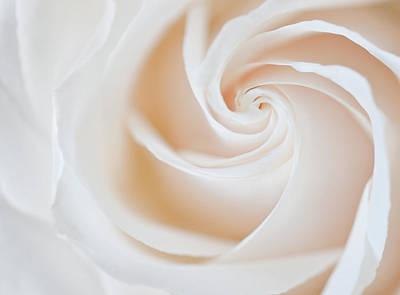 Soft Swirls Poster