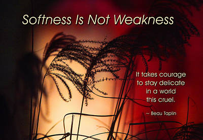 Softness Is Not Weakness Poster