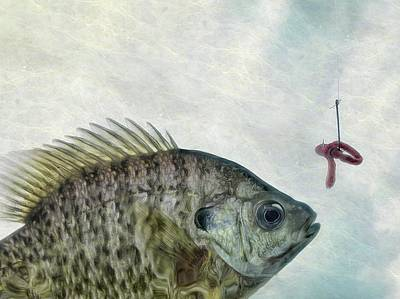 Poster featuring the photograph Something Fishy by Mark Fuller