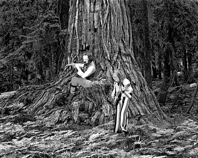 Poster featuring the photograph Songs In The Woods by Ben Upham